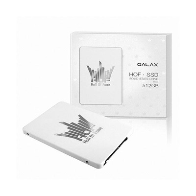 갤럭시 GALAX HALL OF FAME SSD 512GB MLC